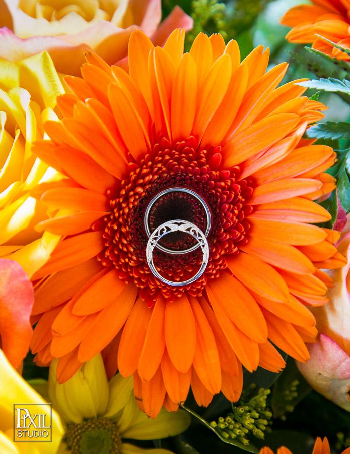 IMAGE: http://www.pixilstudio.com/weddings/longmeadow-event-center-wedding/content/images/large/2014-wedding-longmeadow-058.jpg