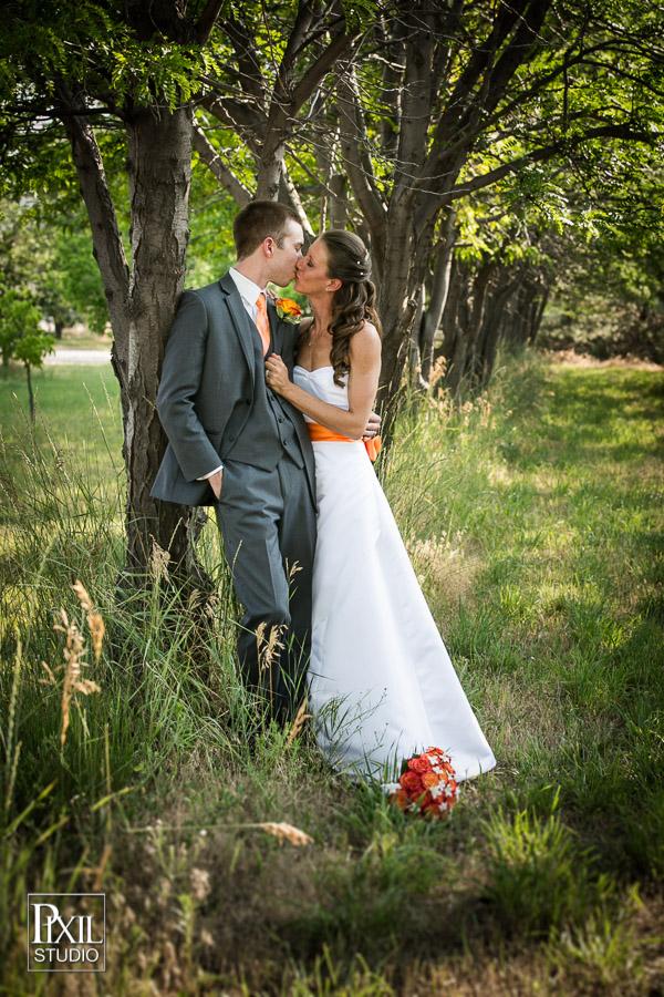 IMAGE: http://www.pixilstudio.com/weddings/longmeadow-event-center-wedding/content/images/large/2014-wedding-longmeadow-695.jpg